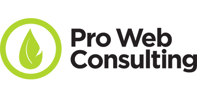 Pro Web Consulting